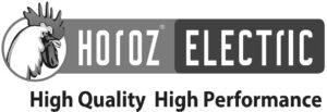 horoz-logo_gs